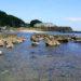 多々良浜(たたらはま) / 三浦半島 / 神奈川 シュノーケリングのスポット 海情報